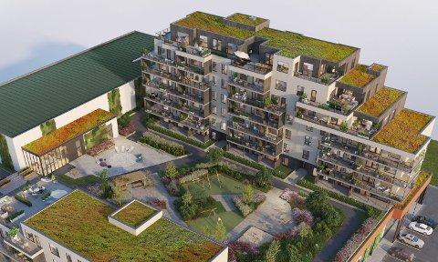 SOLGT: Prosjektet Soleglad på Tjøtta, skal romme 53 leiligheter totalt. I første byggetrinn er det planlagt 36 leiligheter. Nå er 14 solgt, inkludert den dyreste, med prisantydning på 11 millioner kroner. Den ligger i sjuende etasje, til høyre i bildet, og har to terrasser.