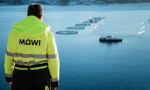STORFISK FIKK NEI: Mowi er et av verdens største sjømatselskaper, men har fått avslag på planene om en ny lokalitet for oppdrett av laks, ørret og regnbueørret i Skreiungen i Flatanger. Her bilde fra ett av selskapets mange anlegg; Beitveitnes på Sunnmøre.