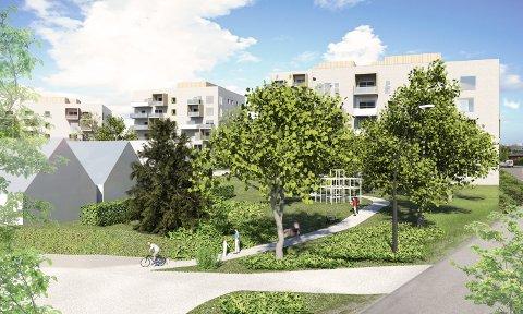 PARK: Utbygger vil tinglyse den gamle eplehagen som offentlig park.
