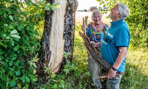 I juli 2018 smalt det skikkelig og «omverdenen» forsvant for Abi og Herman Qvam i Børsumveien. Lynnedslaget i en stor osp på eiendommen deres var av det kraftige slaget.
