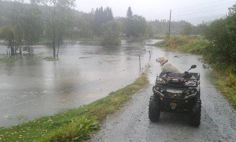 Bildet er tatt av flommen på Nevernes mandag.