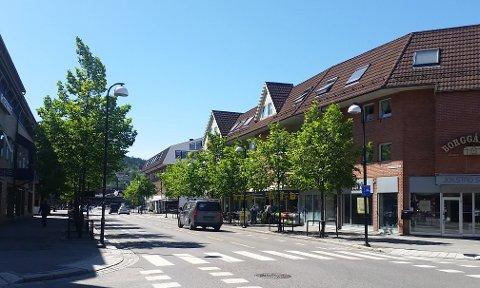STENGES: Sykkelfeltene i Adolph Tidemands gate er denne uka stengt. Disse trærne skaper trafikkfarlige situasjoner om sommeren, og skal beskjæres. Foto: Mariane Kokkim / Statens vegvesen