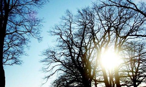 KJØLIG I SOLA: Sola varmer bra i den skarpe vårlufta, og senere i uka blir det atskillig høyere temperaturer.