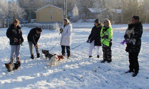 Ønsker hundepark i Trøgstad: Damene som ønsker seg hundepark i Båstad har plukket ut feil tomt. Den har nemlig kommunen planer om å selge.