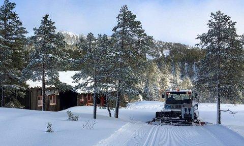 Det er perfekte forhold for skiløpere på Reifjellet nå.