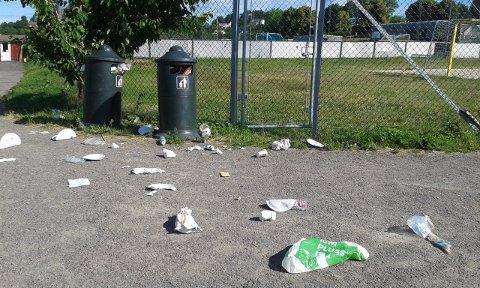 SØPPEL: Måker drar ut søppelet fra overfylte kasser. – Ta med søppelet ditt hjem dersom kassa er full, oppfordrer en av avisens lesere. Foto: Privat