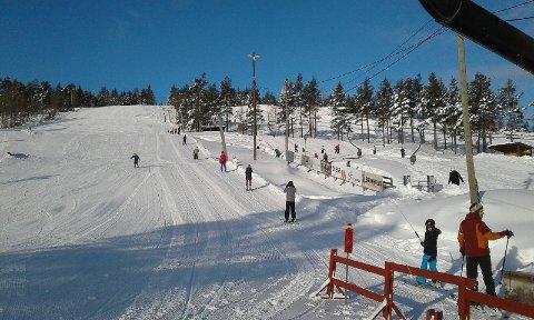 Dette bildet er tatt i skisenteret på Vegårshei ved 10.30-tiden i dag. Skitrekket er i gang igjen, og mange barn kom tidlig på plass i bakken. Og ikke minst, sola skinner fra knallblå himmel på Vegårshei i dag. Foto: VSA.