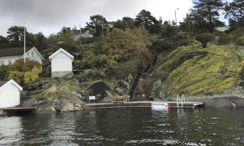 Ringen på Borøy: Flere av politikerne mener størstedelen av denne brygga på 53 kvadratmeter samt trappa må rives, i stedet for å gjøre deler om til offentlig brygge. Saken avgjøres i kommunestyret kommende tirsdag. Arkivfoto