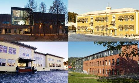 FORSLAGET: Et oppgaveutvalg vil legge ned Hokksund barneskole på Lerberg og bygge ny på Loesmoen. De vil også samle alle ungdomsskoleelevene i Hokksund.