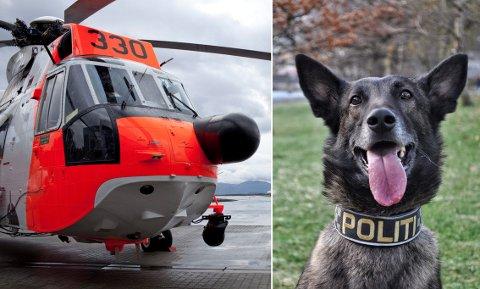 FUNNEN: Tysdag ettermiddag vart narkotikahunden Odin funnen att. Han vart medlt sakna måndag.