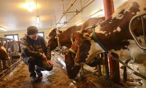 Press: Kåre Johannes Aase er mjølkeprodusent og avhengig av ei operativ veterinærteneste. Han er bekymra for situasjonen for dyrevelferden i Indre Hardanger no, og vonar statlege styremakter kjem på bana.