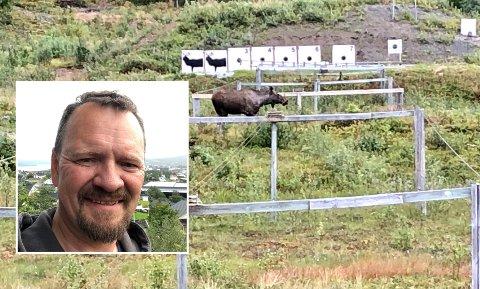 ERTE-ELG: – Det virker som elgen kjenner kalenderen. De vet utmerket godt at vi ikke kan skyte de før 25. september. Jeg følte den pekte nese til meg, sier Kjetil Bornø.