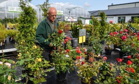 PAKKER SAMMEN: Anders Iversen og Blomsterkroken stenger snart hagesenteret i Elverum for i år.