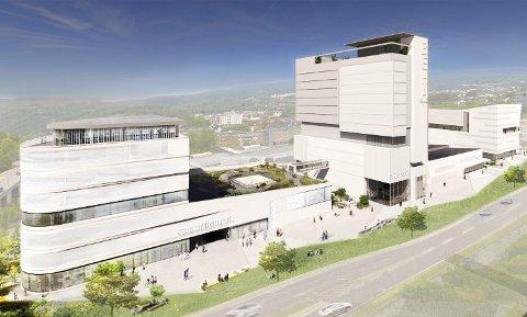 PARK: Schanke vil ha helsepark i Behakvartalet.