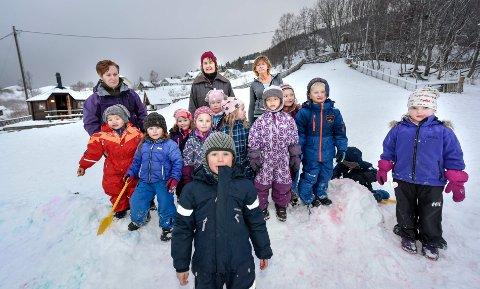 Dalselv og Dalsgrenda med privat barnehage, eldresenter, Montesorriskole og Dalselv idrettslag med dugnad.