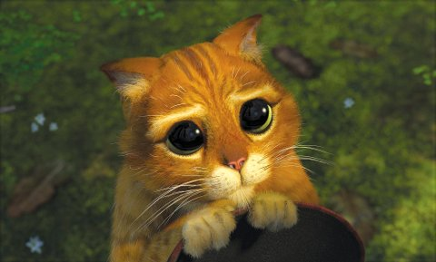 Pictured:  Puss In Boots (ANTONIO BANDERAS) is impossible to resist when he makes cute kitty eyes in DreamWorks' computer animated comedy adventure SHREK 2.