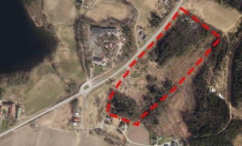 MASSEDPONI: Det er dette området på Holtebrekk man ønsker å etablere et massedeponi. Steinerskolen ligger rett på andre siden av veien for området.