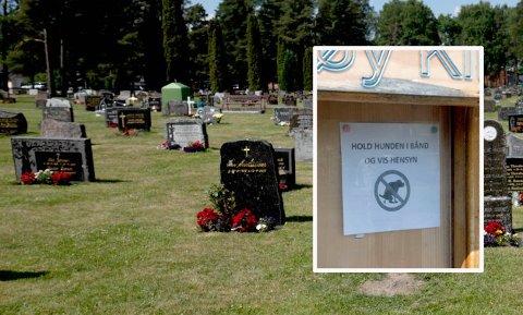 UFINT: En bruker av kirkegården på Gimsøy hevder at enkelte hundeeiere bruker gravstøttene som hinderløype. Foto: Ørjan Madsen
