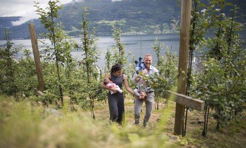 Arita med lille Vilje og Gjermund med viltre Lavrans i eplehagen. Av disse lages verdens beste sider, skal vi tro ekspertene i Hardanger, Nå investerer det unge paret for å bygge opp en mer omfattende produksjon på familiegården.