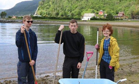 DUGNADSGJENG: Martin Vefring Ullaland (15), Kristian Lunde Aven (15) og Sunniva Johannessen (16) stilte opp på dugnad fredag føremiddag.