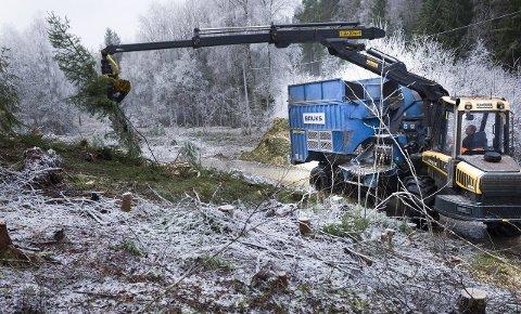 Store dimensjoner: Det er bygget to kilometer med nye vannrør mellom vannverket og høydebassenget på Høyfjell. Bildet er tatt i oppstartsfasen av prosjektet, da Fredrikstadmarka ble ryddet for å legge til rette for arbeidet.