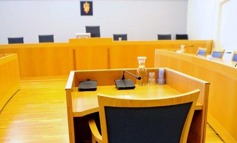VITNE: Retten satte større lit til vitnet som var ute og gikk tur med hunden, enn tiltalte som endret forklaring om å ha kjørt i fylla