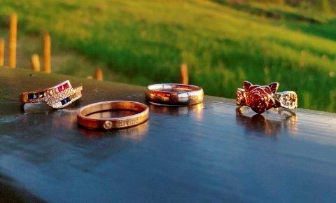 Disse ringene dukket opp i lommeboka Vibeke Mo kjøpte for 10 kroner på brukthandel.
