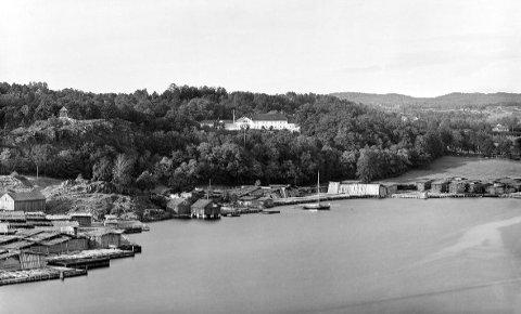 Hollenderen, Rød og Tyska fra fjorden ca. 1890. Østfoldmuseene mener «Fredrikshald brygge» vil dominere Tyskaområdet til høyre.
