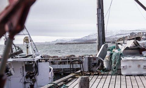 VIND: I Vadsø er det mye vind denne torsdagen. Ifølge meteorologen vil det også komme snøbyger de nærmeste dagene.