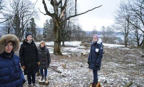 – ET GROTESK SYN: Det var reaksjonen til f.v. Anne Cathrine Evjan (ped. leder Noahs Ark), Linn Hagtvedt (mor, Nøste barnehage), Bente Hardang (styrer Noahs Ark), Camilla Borgeraas (mor, Nøste barnehage) da de så trærne i Ekelyparken bli fjernet.