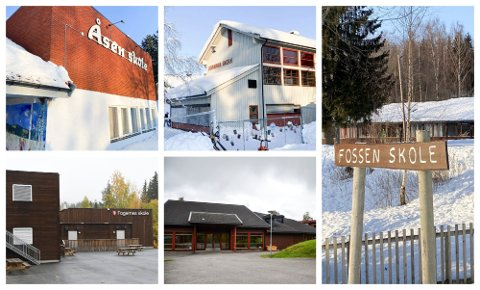 KONSEKVENSUTREDNING: Det gjennomføres for tiden en konsekvensutredning av skolestrukturen i Nordre Ringsaker. Rapporten fra WSP skal etter planen leveres 6. mai.