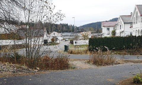 OVERGANGSVEI: Krystallveien ligger mellom en liten gangvei (i forgrunnen)  og en tilslutningssvei til et boligområde, der mange barn  ferdes over og langs veien.