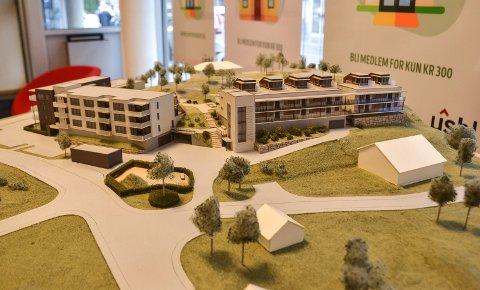 BERGANÅSEN: De 35 leilighetene skal bygges i Kiserødveien, rundt fem kilometer sør for Sandefjord sentrum.