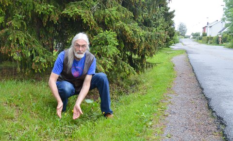 KANTKLIPP: Are Thoresen mener bier og andre insekter bør få boltre seg i uklippet gress langs veiene.