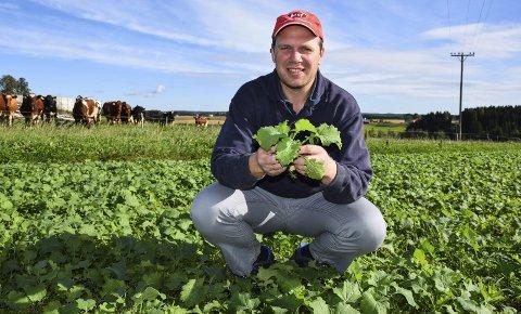 LOKALE RÅVARER: Melkebonde Einar Kiserud fra Spydeberg skal sammen med 20 andre bønder fra Østfold utvikle et nytt fór til kuene som er laget av 95-98 prosent lokale råvarer. En av ingrediensene er høstraps.