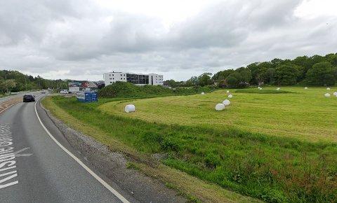 På denne Grannes-marken like ved kommunegrensen til Stavanger skal det bygges boliger.