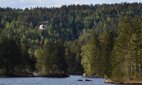 Meteorologene melder om stigende skogbrannfare.