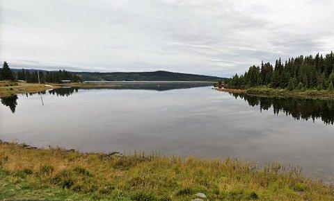 Ølsjøen er et godt fiskevann sommer som vinter, og et ettertraktet sted for fugletitting.