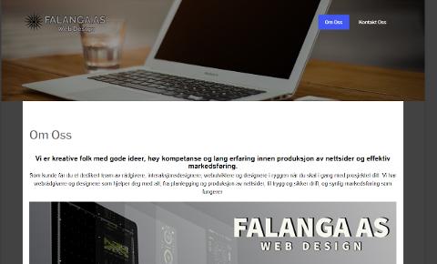 FØRST UT: Selskapet Falanga As ble registret i foretaksregisteret i Brønnøysund mandag 4. januar. De var dermed det første av av seks nyregistreringer hittil i år.