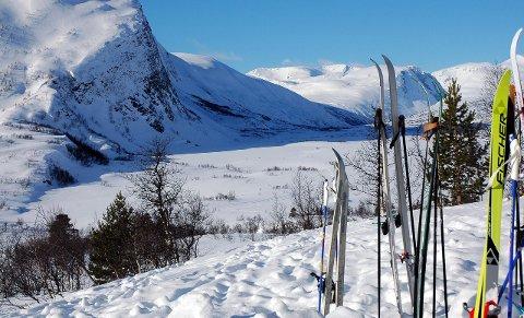 Kjører opp spor: Til vinteren kan Grødalen hytteeierforening kjøre opp spor til Stortæla med egen tråkkemaskin.Arkiv