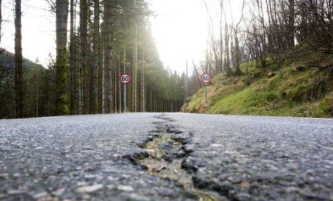 Sprekk i FV 163: Selv om fylkeskommunen er de dårligste til å skjøtte veiene sine, får de et langt større ansvar for veiene i forbindelse med regionreformen. Nær sagt alle andre enn fylkene advarer mot reformen som regjeringen har lagt frem. FOTO: EMIL WEATHERHEAD BREISTEIN