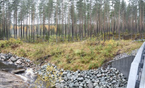 DET BLIR VED BJØRE: Det er i dette området ved Bjøreelva det nå er vedtatt at det nye anlegget skal bygges. Det skal stå ferdig i 2019/2020.