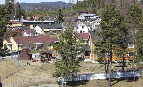 KRITIKK: Eidskog kommune har fått kritikk for gjennomføringen av eiendomstakseringen. Ordfører Kamilla Thue er enig i at kommunen har endel ting å lære.FOTO: BÅRD ENGH