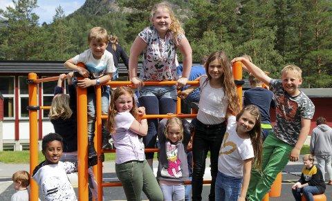 Kjekt: Hosie, Ingrid Ane, Eirik, Kaia, Cecilie, Emilia, Amelia og Eivind tykkjer det er veldig kjekt at aktivitetsparken no endeleg er på plass på Lægreid skule.