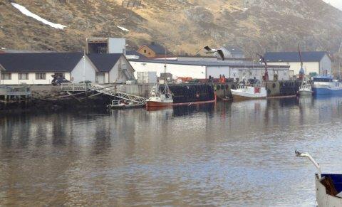 Sikret området: Nordkappregioene Havn og Nordkapp brannvesen la ut lenser i området for å hindre at dieselen kom over et enda større området.