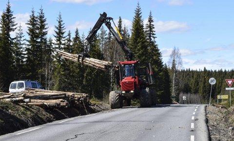 TØMMERDRIFT: Tømmerdriften langs Fylkesveg 247 startet onsdag, og er en forberedelse til nært forestående veiutbygging.Foto: Sæmund Moshagen