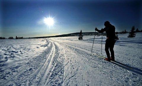 Høyfjellshotell ved Rondane vil teste ut nytt konsept for skiturisme, og søker testpersoner.