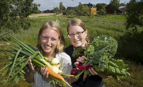 Fruktbart pilotprosjekt: Søstrene Marie (t.v.) og Kjerstin Bjønness har satt i gang et pilotprosjekt med parsellhage på et fem mål stort område ved Bjønness Slektsgård. Etter  gode erfaringer går de videre med planene. 8Foto: Håvard Solerød