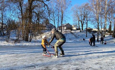 Skøyteisen i Rosahaugparken er populær, og når får ildsjelene som jobber med den 40.000 kroner til utstyr og vedlikehold. Her leker Sverre Foyn-Nilsen (3) og pappa Jørgen hermegåsa i vinter.