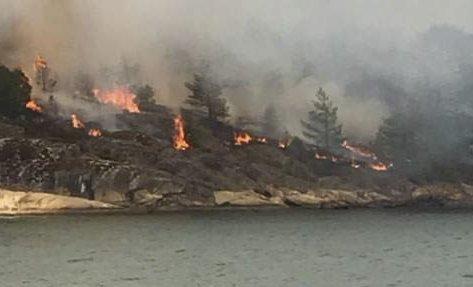 BUKKØYA: Flere skogbranner, som her på Bukkøya i juli, skapte mye hodebry for brannvesenet.